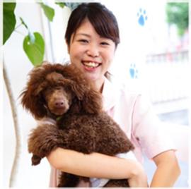 【動物看護師】市川稚菜