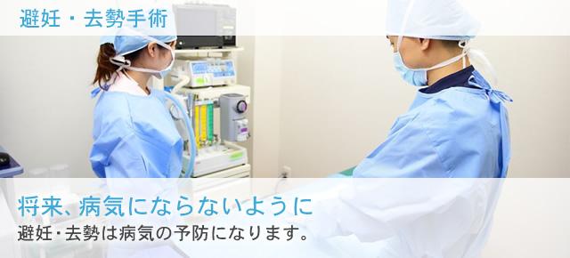 将来、病気にならないように 避妊・去勢は病気の予防になります。